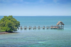 Ocean reef boardwalk. Tropical under sea ocean reef with thatched hut and boardwalk Stock Photo