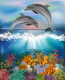 Tropical underwater background with Dolphins stock images
