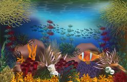Tropical underwater background with pearls and tropical fish , vector. Illustration Stock Photo