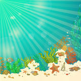 Tropical underwater ocean background. Marine vector illustration. Fish, starfish, shells, algae, bottle with a letter and key. Underwater sunny rays. There is Stock Photo