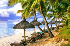 Tropical vacation. beautiful beach scenery with palms and beach stock images