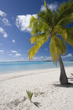 Tropical vacation - The Cook Islands. Tropical vacation in Aitutaki Lagoon in The Cook Islands stock images