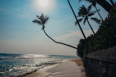 Tropical vacation holiday background - paradise idyllic beach. Sri Lanka Stock Photos