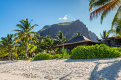 Tropical vacation in Le Morne Beach, Mauritius Royalty Free Stock Photo