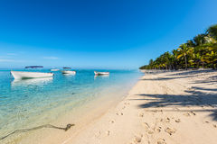 Tropical vacation in Le Morne Beach, Mauritius. Stock Photography