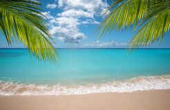 Free Tropical Vacation Paradise With White Sandy Beaches And Swaying Palm Trees. Royalty Free Stock Image - 181526126