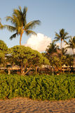 Tropical vacation resort - 2. A tropical vacation resort in Maui, Hawaii royalty free stock photo