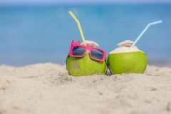 Tropical vacation travel concept. Royalty Free Stock Photo