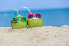 Tropical vacation travel concept, Two fresh young coconut lying Stock Photography