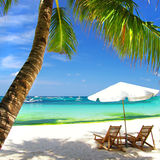 Tropical vacations Royalty Free Stock Photo