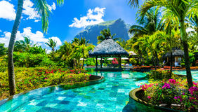 Tropical vacations - relaxing pool bar . Mauritius island Stock Photos