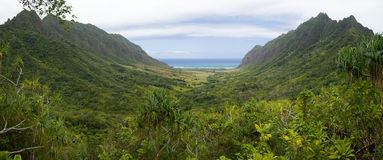 Tropical Valley Panorama Royalty Free Stock Photo