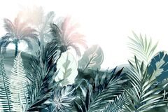 Free Tropical Vector Background Or Wallpaper Poster With Palm Treed And Green Leaves, Watercolor Realistic Style Royalty Free Stock Photo - 173605985