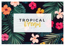 Tropical vector design with bright hibiscus flowers and exotic palm leaves on dark background. Royalty Free Stock Image