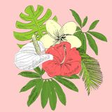 Tropical vector illustration. With leaves and flowers Royalty Free Stock Photos