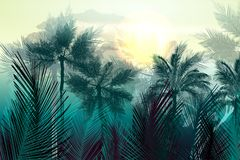 Tropical vector jungle landscape with palm trees and leafs. Morning green light vector illustration