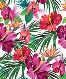 Tropical vector pattern stock illustration