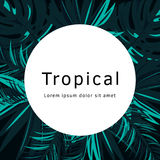 Tropical Vector Poster With Tropical Leaves And Flowers Royalty Free Stock Image