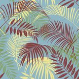 Tropical Vector seamless beautiful artistic bright tropical patt. Ern with exotic forest. Original stylish floral background print, bright  colors on blue Stock Photo