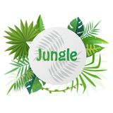 Tropical vector template banner Illustration. Exotic Plants background, rainforest design with tropic leaves. Tropical vector template banner Illustration Stock Photos