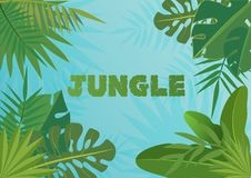 Tropical vector template banner Illustration. Exotic Plants on bblue sky background, rainforest design with tropic. Leaves Stock Photography