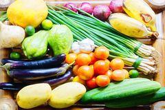 Tropical vegetables and fruits Stock Images