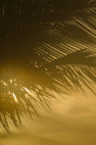 Tropical vertical background Royalty Free Stock Photos