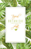 Tropical vertical banner Royalty Free Stock Images