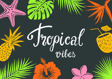 Tropical vibes background with tropic flowers silhouettes hibiscus, bird of paradise. Plumeria, seashell, coconut drink, palm and monstera leaves, pineapple Royalty Free Stock Photos