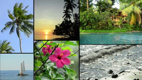 Tropical videoclips of bali, indonesia. Combined to a clip of tropical impressions.  stock footage