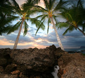Tropical View. A glimpse of paradise in Hawaii Royalty Free Stock Images