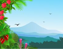 Tropical view background Stock Image