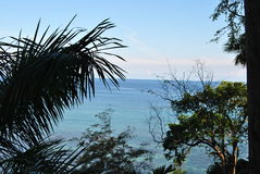 Tropical view. Calm Caribbean sea, blue sky and horizon, water in Jamaica on our holiday, with trees in the front stock images