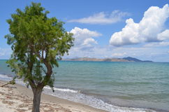 Tropical view in Greece Stock Photos