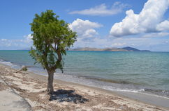 Tropical view in Greece royalty free stock photo