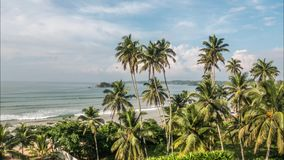 Tropical View Ocean Palms Timelapse 4k. Timelapse of some palm trees with the ocean in the background in Sri Lanka. 4k footage stock video