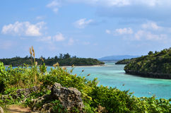 Tropical view Royalty Free Stock Images