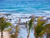 Tropical View. Rocky tropical view overlooking ocean Stock Images