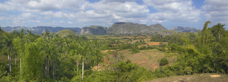 Tropical view of the Valle de Vi�ales, in central Cuba Royalty Free Stock Photos