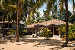 Tropical Villa on Beach with Coconut Palm Tree. Bungalow or Summerhouse near Ocean. Private House or Cottage for Relax Calm Vacation. Luxury Summer Holiday stock photography