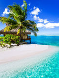 Tropical villa and palm tree next to blue lagoon Stock Images