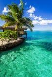Tropical villa and palm tree next to green lagoon Stock Photos