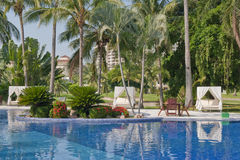 Tropical villa swimming pool. Swimming pool with tropical palm trees and villa building in background stock images