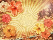 Tropical vintage background Stock Photos