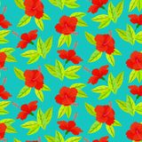 Tropical vintage pattern with red hibiscus flowers Royalty Free Stock Photo