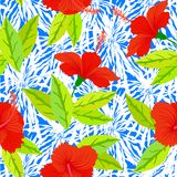 Tropical vintage pattern with red hibiscus flowers Royalty Free Stock Images