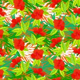 Tropical vintage pattern with red hibiscus flowers Royalty Free Stock Image