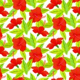 Tropical vintage pattern with red hibiscus flowers Stock Image