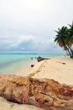 Tropical virgin beach Royalty Free Stock Photos