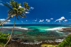 Tropical volcanic beach on Samoa Island with many palm trees Royalty Free Stock Image